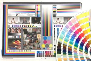 Colour Chart and Swatches