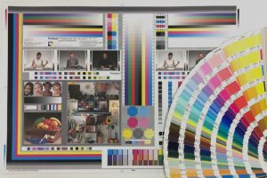Colour Sample Chart and Pantone Swatches