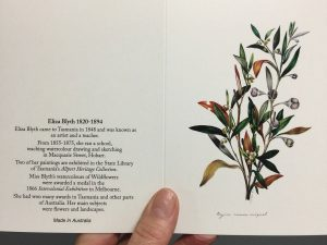 Eliza Blyth greeting cards for the florist in us all