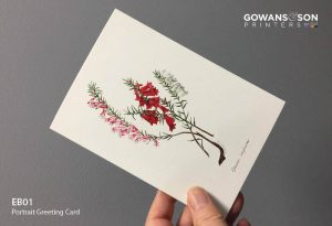 Selling beautiful greeting cards featuring the illustrations of historical botanical artist, Eliza Blyth at wholesale prices