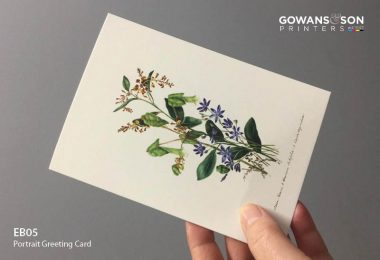 Beautiful greeting cards featuring the illustrations of historical botanical artist, Eliza Blyth at wholesale prices